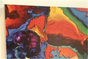WER-E2000UV kanvas baskı örneği