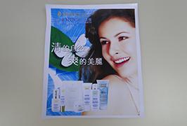 3,2 m (10 feet) eko solvent yazıcı WER-ES3201 3 tarafından basılan PVC afiş